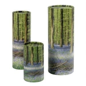 Bluebell Wood Scatter Tubes