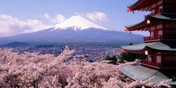 ashes poem japan