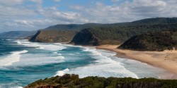 coast scattering nsw