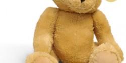 bear_teddy_ashes