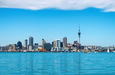 legal changes new zealand