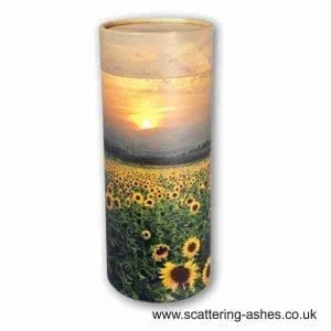 Sunflower Field Scatter Tubes
