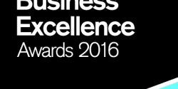 South Devon Business Excellence Awards logo